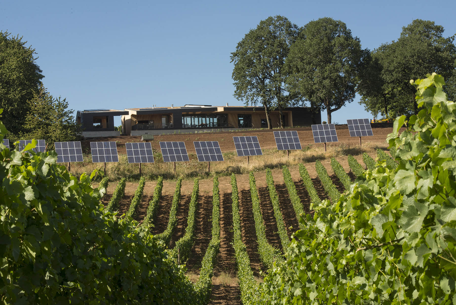 Energy from existing PV panels was reallocated to the tasting room, making its goals of net-zero energy attainable. Photo courtesy of Andrea Johnson