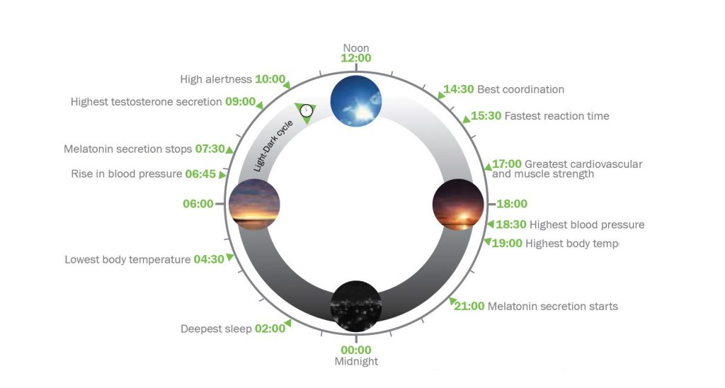 Circadian Clock from PhotonStar LED, Glumac