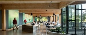 Cross Laminated Timber at First Tech Headquarters
